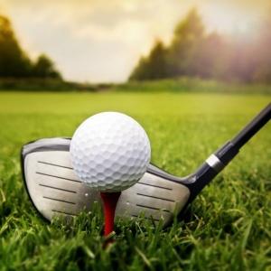 British Chamber 2016 Golf & Family Day
